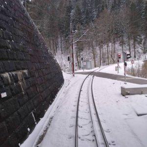 Der Winter ist zurück ❄ In den letzten Tagen hat es bei uns wieder ordentlich geschneit 🌨...