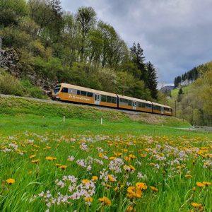 Wir wünschen euch einen wunderschönen Muttertag ❤️ #niederösterreichbahnen @mariazellerbahn #frühling #eisenbahnliebe #ausflug #niederösterreich 📷 NB/Danner Mariazellerbahn