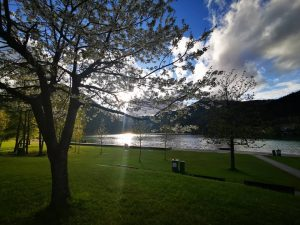 .... Sonnenfenster 🌞💚#visitmariazellerland #mariazellerblog #Erlaufsee #visitsteiermark Erlaufsee