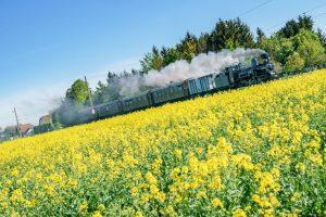 Am 12. und 13. Juni steht bei unserer @mariazellerbahn alles ganz im Zeichen der Schmalspurtage 🚂😍 Auf...