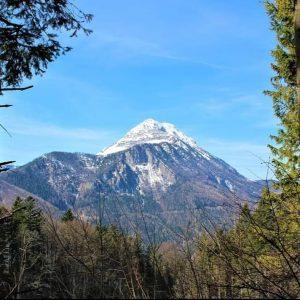 Mariazellerbahnwanderweg von Puchenstuben nach Wienerbruck wunderschöner Ausblick auf den Ötscher, der zum Greifen nah ist