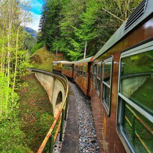 #ötscherbär #mariazellerbahn #nostalgiezug #alpenvorland #mostviertel #bergbahn #berge #mountains #nature #wald #eisenbahn #mariazell #mariazellerland
