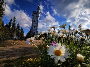 ... So kann der Tag enden 😊😊💚🌞#visitmariazellerland #mariazellerland #visithochsteiermark #visitsteiermark #beautiful Mariazeller Bürgeralpe